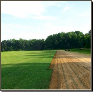 Farming sod positively affects the environment because it benefits the soil